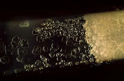 Hexafluorure d'uranium